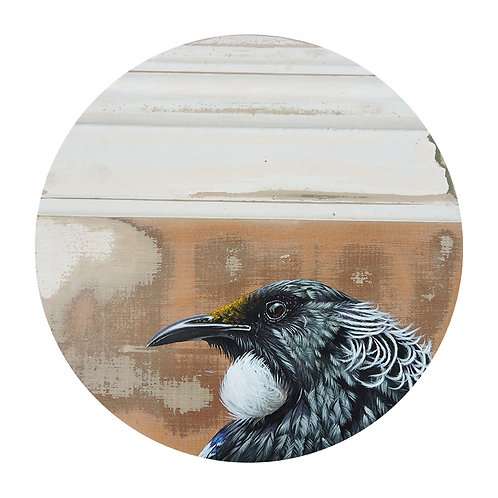 Tui - Limited Edition Print