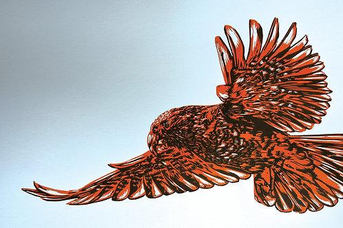Kea - Wood Cut Print