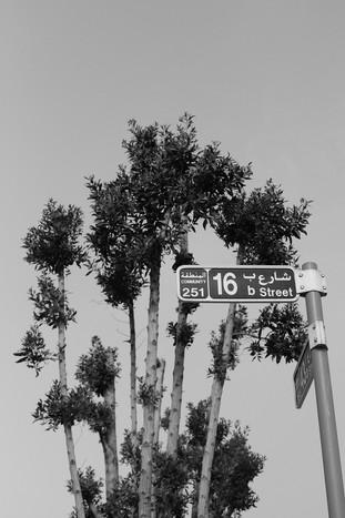 16b Street