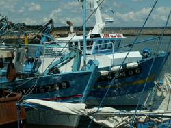 Sur le port de pêche