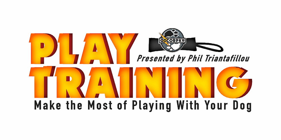 Play Training - Make the Most of Playing With Your Dog ⚡️