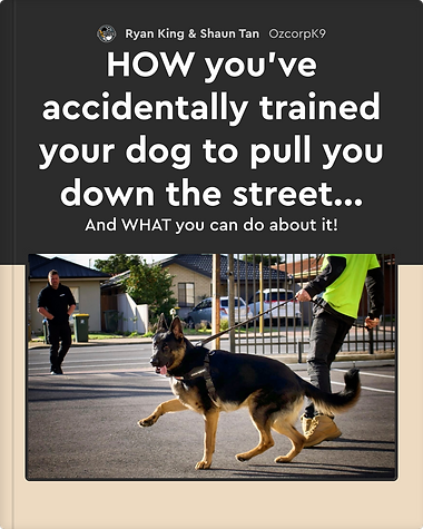 HOW you've accidentally trained your dog to pull you down the street...-cover (1) copy.png