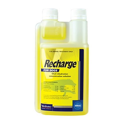 Virbac – Recharge for Greyhounds