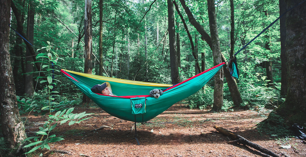 Eno camping with dogs