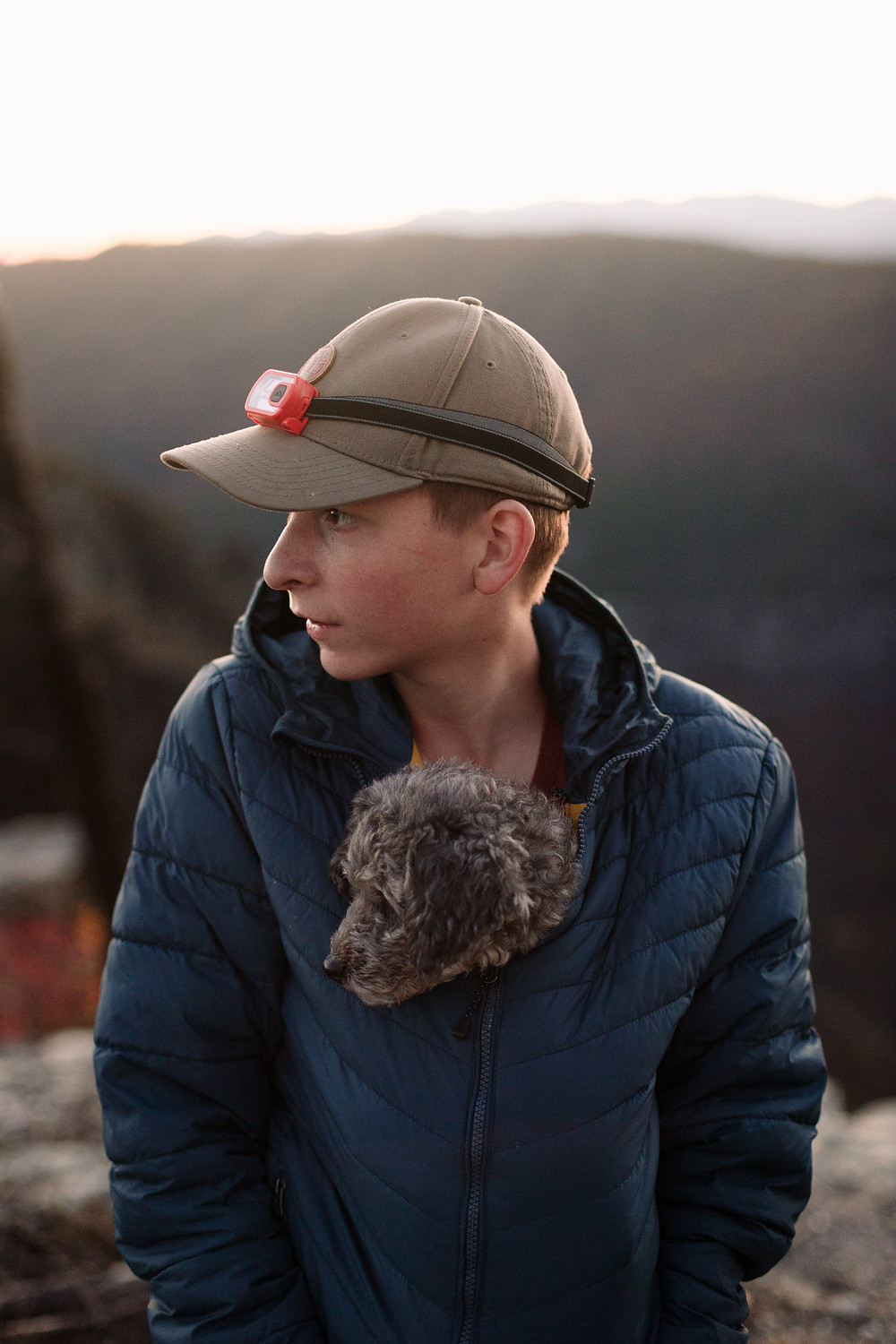 Camping with dogs, miniature poodle in your coat