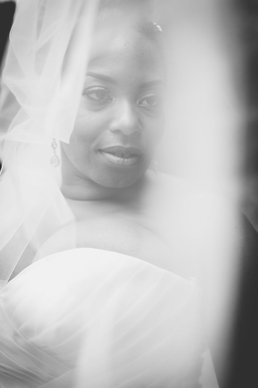 Bride through the wedding veil
