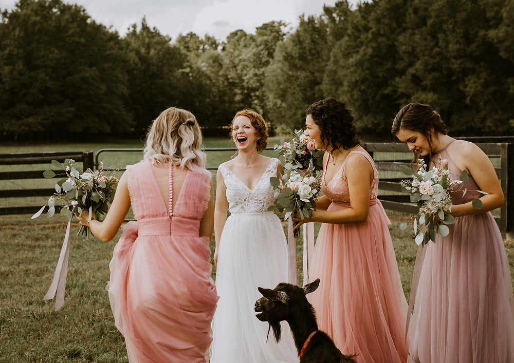 bridesmaids and goats