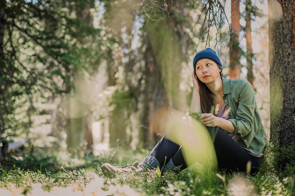 Mount Ida forest trailhead