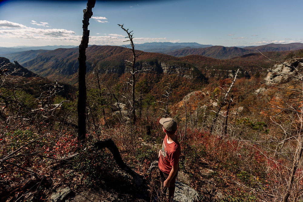 Looking out at Linville Gorge