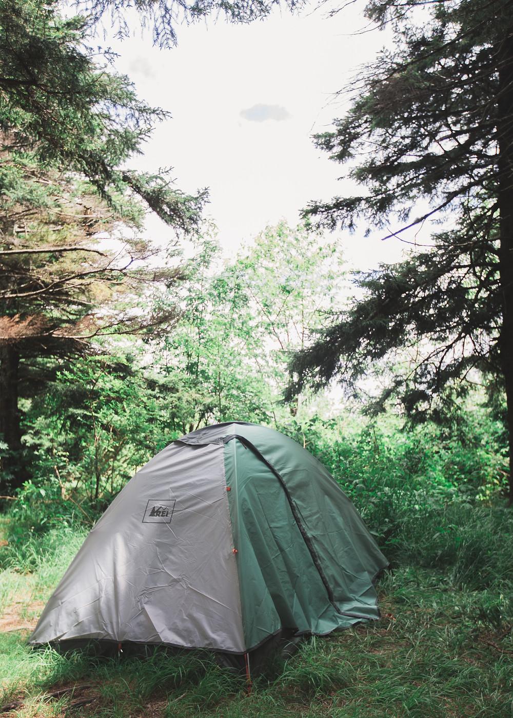 REI green tent