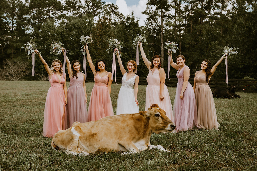 bridesmaids with cow