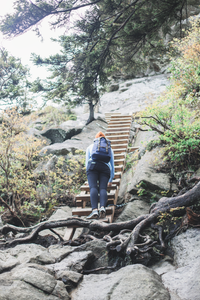 Ladders at Grandfather Mountain hike