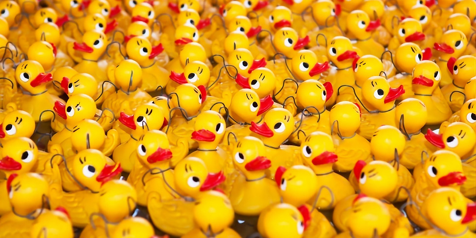 The Great Highlands Duck Race