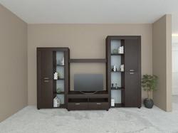 TV009