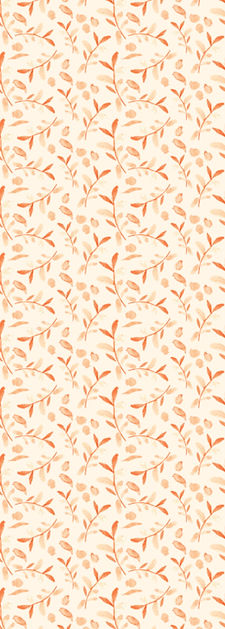 WIX Desktop Orange Tossed 150.jpg