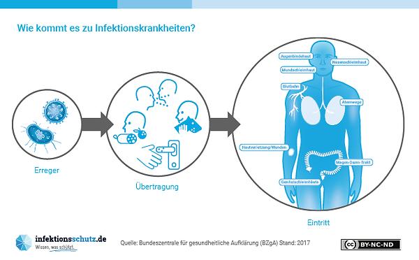 Infografik Übertragung von Infektionskrankheiten