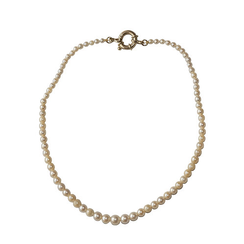 Graduated Pearl Choker Necklace With Oversized Clasp