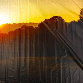 13_Bosco tramonto