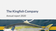 Business update and annual report 2020
