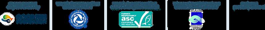 KF-logo-list-2020.png