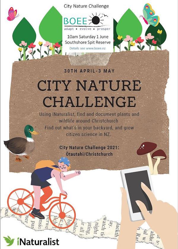 nature challenge2.JPG