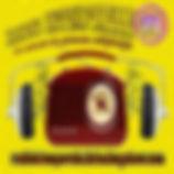 logo RADIO INTEMPORELLE 71 02 complet DE