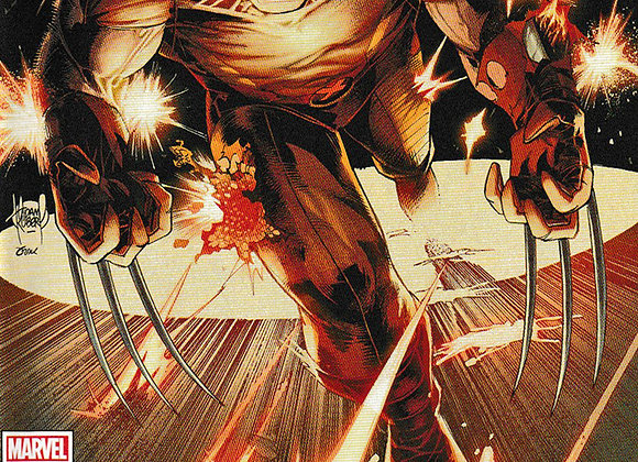 Wolverine Issue/ # 3 You Didn't See Nothing Marvel Comics - Comics