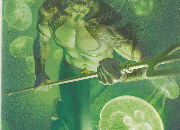 Aquaman Issue/ # 52 Card Stock Variant Cover DC  Comics - Comics