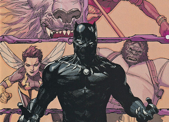 Black Panther And The Agents Of Wakanda Issue/ # 1 Variant Edition Marvel Comics