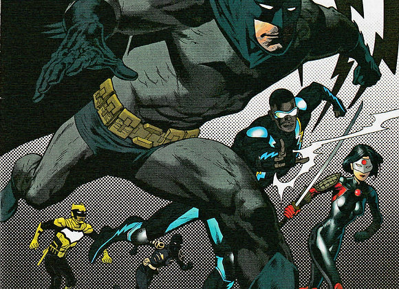 Batman And The Outsiders Issue/ # 5 Variant Cover DC Universe Comics - Comics
