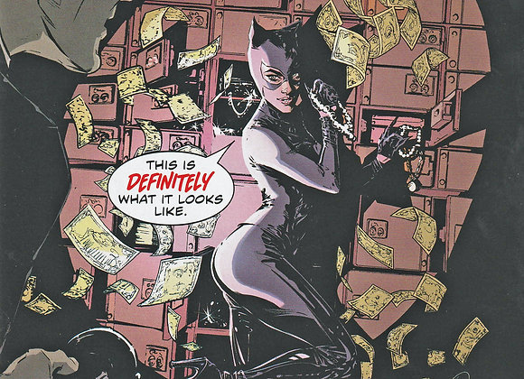 Cat Woman Issue/ # 15 This Definitely What It Looks Like DC Comics - Comics