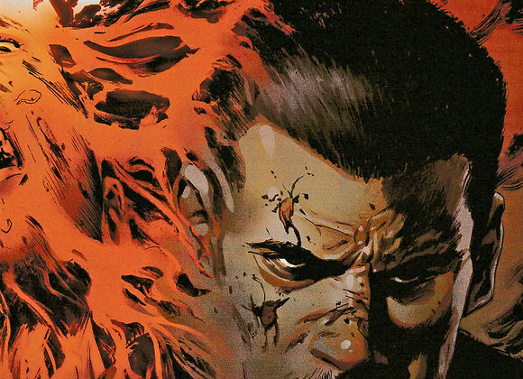 The Punisher Issue/ #15 Wraparound Variant Cover Marvel Comics  - Comics