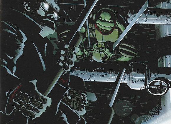 Teenage Mutant Ninja Turtles TMNT Urban Legends Issue/ # 17 IDW Comics - Comics
