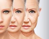 Anti-Aging Therapies