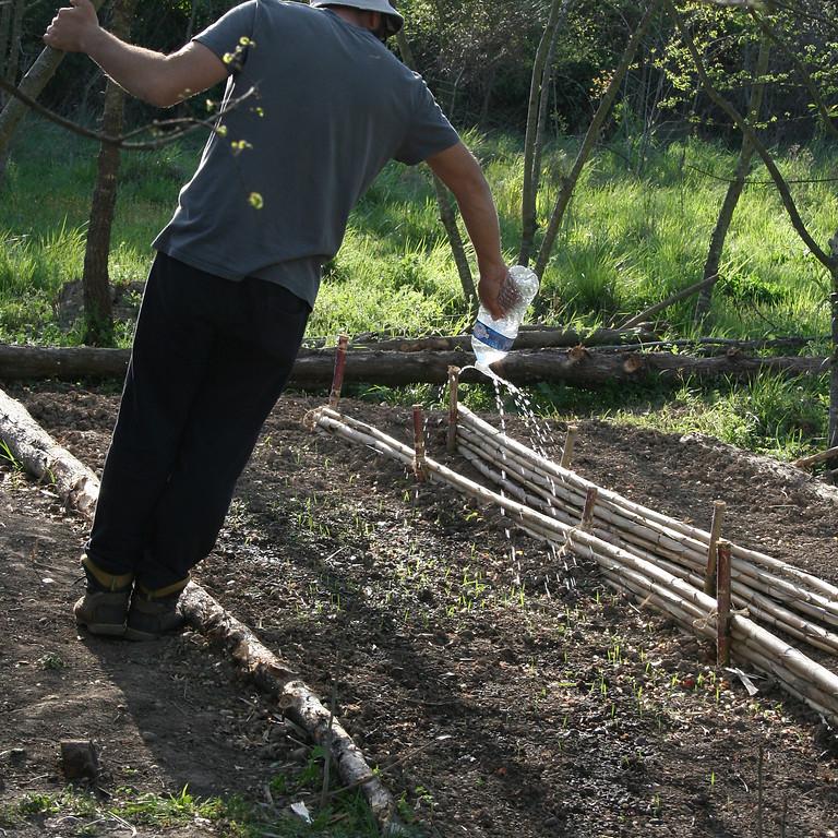 Atelier Découverte de la permaculture