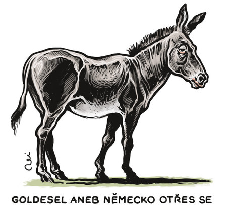 Goldesel