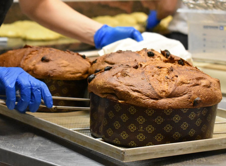 Panettone - עוגת קריסמס שצריך לדעת להכין