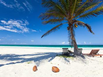 playa del carmen & tulum