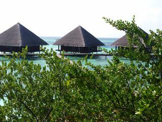 Maldive, un'attesa lunga un sogno