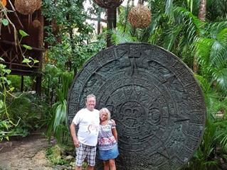Delfini, coccodrilli e tartarughe nel fantastico Messico