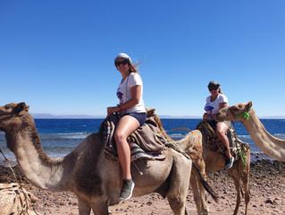 Egitto, una bella scoperta!