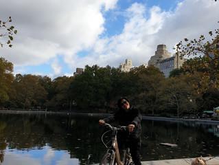 Magica New York!