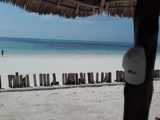 Vacanza indimenticabile a Zanzibar