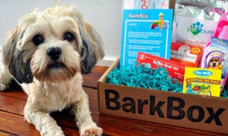 Bark & Company Delivery Box