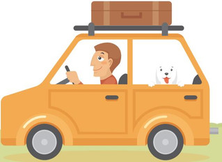 Driving With Dogs 101: How to Keep Your Dog Safe and Happy in the Car
