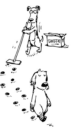 Swiffer pups