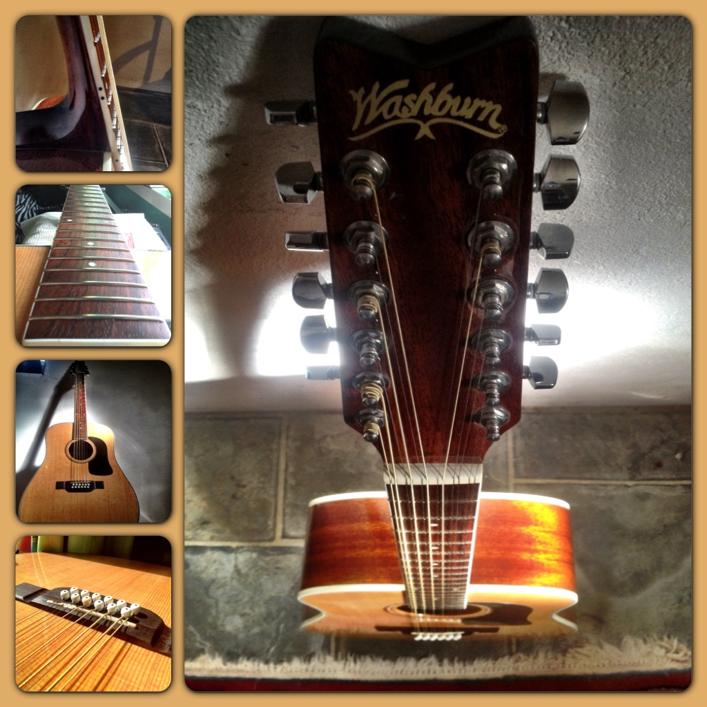 Washburn 12 string