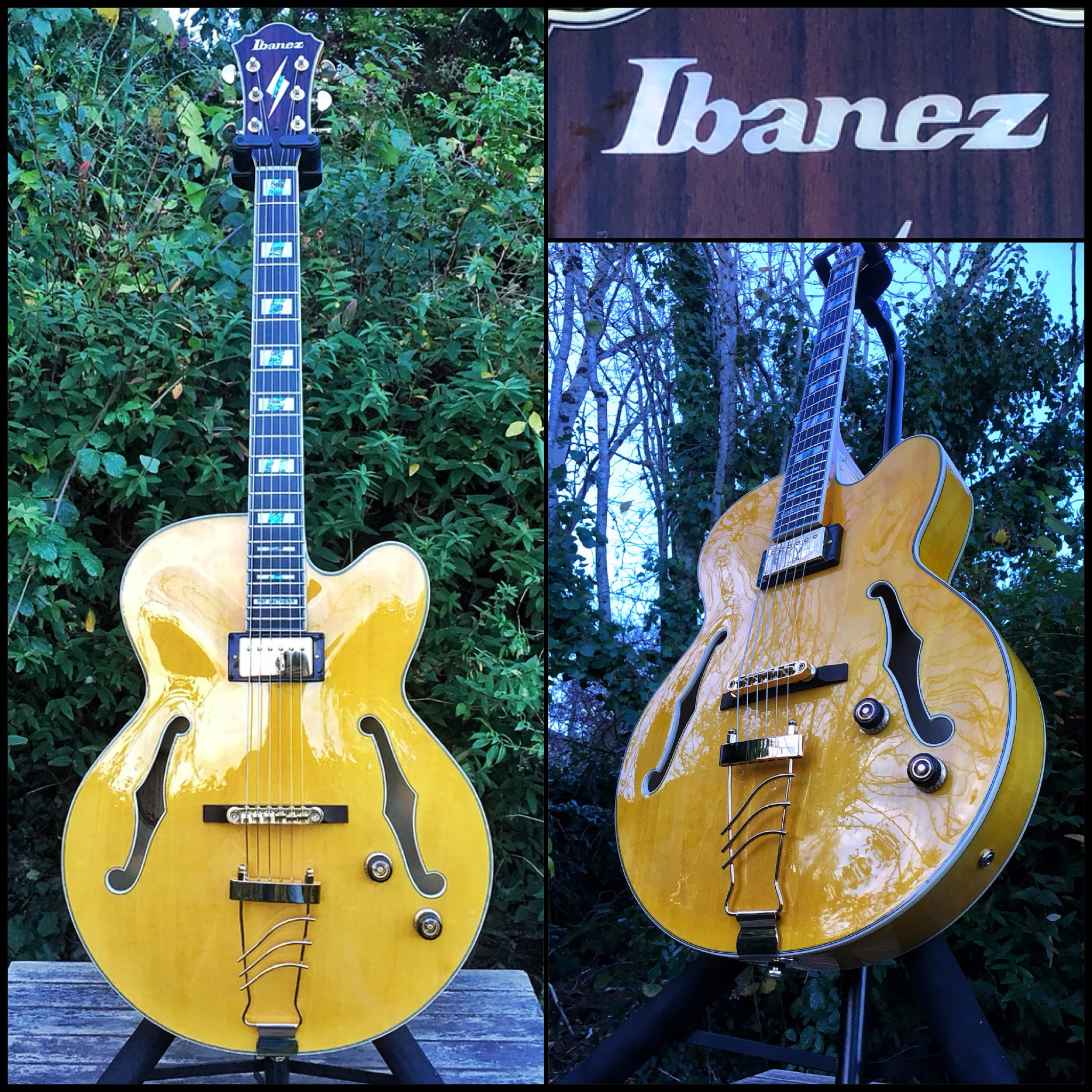 Ibanez Pat Metheny