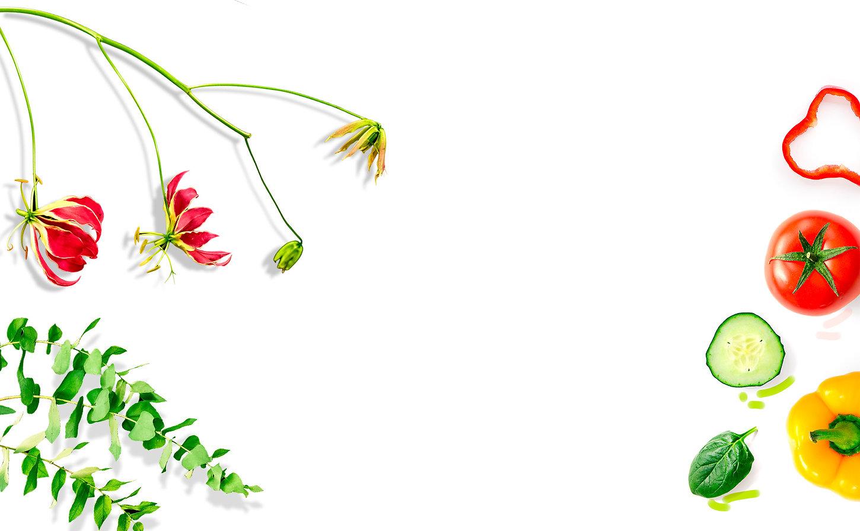 蔬菜「ST」4.jpg