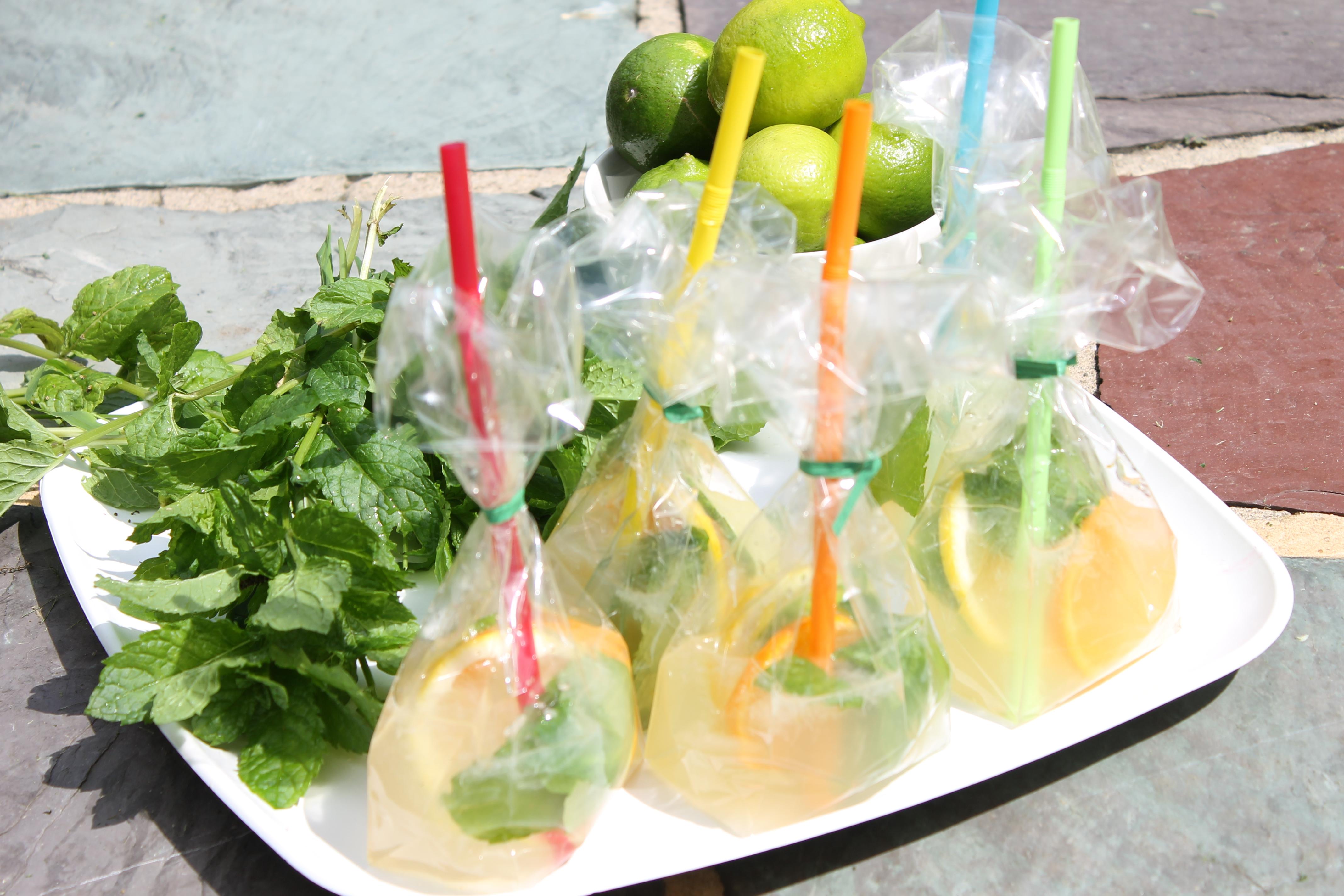 Mojito Juice Bags